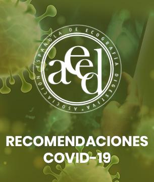 Actualización: Recomendaciones de la AEED para el reinicio de la activadad ecográfica tras la fase aguda de la pandemia por SARS-CoV-2