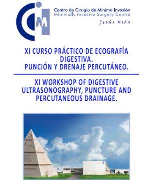 XI Curso Práctico Ecografía Digestiva: punción y drenaje percutáneo